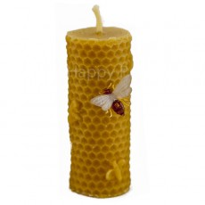 Small Honeycomb Pillar with Bees